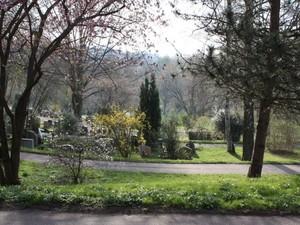 Ostermorgen auf dem Friedhof